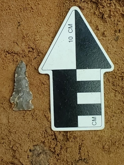 This picture shows an arrowhead being measured.
